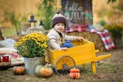 Niño en parque del otoño Muchacho adorable feliz con las hojas de la caída El concepto de risas de la niñez, de la familia y del  foto de archivo