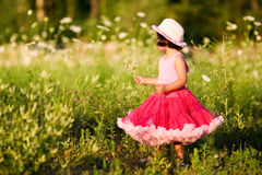Niño en un campo de flor fotografía de archivo
