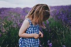 Niño en un campo de la lavanda Fotos de archivo libres de regalías