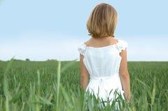 Niño en un campo de trigo imagen de archivo libre de regalías