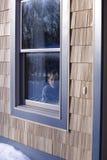 Niño en una ventana fotografía de archivo