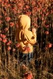 Niño en wildflowers fotos de archivo
