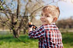 Niño encantador que mira la cámara mientras que árboles de la poda Fotos de archivo