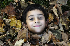 Niño entre las hojas Fotografía de archivo libre de regalías