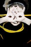 Niño extranjero de la muchacha con los ojos en las palmas de manos Fotografía de archivo libre de regalías