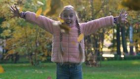 Niño feliz con las coletas que lanzan para arriba las hojas de otoño, tiempo alegre de la niñez almacen de video