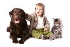 Niño feliz con sus animales domésticos Fotografía de archivo libre de regalías
