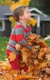 Niño feliz en las hojas Foto de archivo libre de regalías