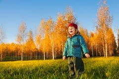 Niño feliz en parque del otoño Fotos de archivo