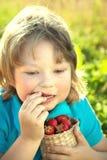 Niño feliz que come las fresas cerca de un jardín soleado con un summe Fotos de archivo libres de regalías