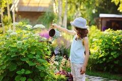 niño feliz que juega arbusto de la pequeña hortensia del jardinero y del riego en el jardín soleado del verano, pequeño concepto  fotos de archivo libres de regalías