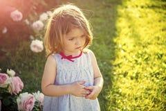 Niño feliz que se divierte Niño con la cara de pensamiento en vestido azul en las rosas florecientes Imagen de archivo