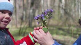 Niño feliz que sostiene un ramo de wildflowers Un regalo de mi madre mientras que camina en el parque Familia feliz, amando almacen de video