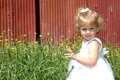 Niño hermoso foto de archivo libre de regalías