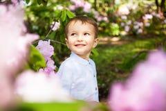 Niño hermoso en flores rosadas, sonrisa del niño pequeño en verano fotografía de archivo