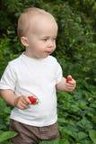 Niño hermoso en jardín del verano Fotos de archivo libres de regalías