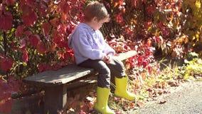 Niño hermoso en suéter en la naturaleza del otoño Tiempo soleado del otoño caliente Muchacho lindo del niño que se divierte en pa almacen de metraje de vídeo