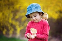 Niño lindo dulce, muchacho preescolar, jugando con poca ji recién nacida fotos de archivo libres de regalías