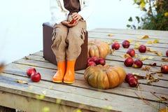 Niño lindo en otoño foto de archivo