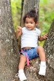 Niño lindo en un árbol Imagen de archivo