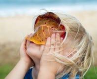 Niño lindo que mira a través de una hoja fotos de archivo