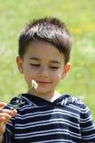 Niño masculino que sonríe a una margarita Foto de archivo