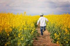 Niño pequeño adorable, corriendo en campo amarillo de la violación de semilla oleaginosa Fotografía de archivo libre de regalías
