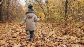 Niño pequeño alegre que corre enérgico a lo largo del carril del parque del otoño almacen de metraje de vídeo