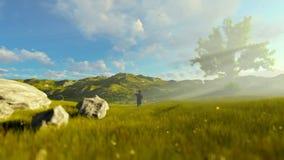 Niño pequeño con el juguete en un prado verde, árbol del aeroplano de la vida, mañana hermosa almacen de video