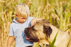Niño pequeño con el perro grande Fotos de archivo libres de regalías
