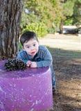 Niño pequeño con un cono del pino fotografía de archivo