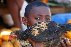 Niño pequeño con un pollo Fotografía de archivo libre de regalías