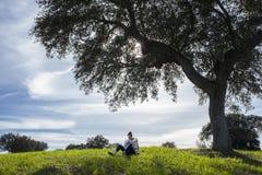 Niño pequeño de amamantamiento de la madre debajo del árbol de la vida Fotografía de archivo