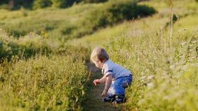 Niño pequeño emocional en la naturaleza que toma sus primeras medidas metrajes