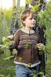 Niño pequeño en bosque del abedul del resorte Fotos de archivo libres de regalías