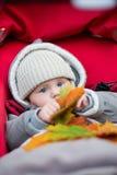 Niño pequeño en el cochecito que juega con las hojas de otoño Foto de archivo