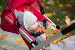 Niño pequeño en el cochecito que juega con las hojas de otoño Foto de archivo libre de regalías