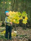Niño pequeño en el sombrero que celebra la rama y la sonrisa del arce Fotos de archivo