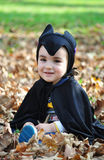 Niño pequeño en parque del otoño Imagen de archivo