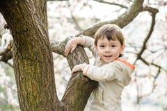 Niño pequeño en tiempo de primavera cerca del árbol del flor Imagen de archivo libre de regalías