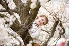 Niño pequeño en tiempo de primavera cerca del árbol del flor Imagenes de archivo