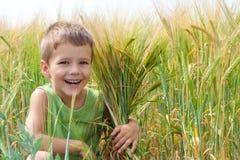 Niño pequeño en un campo de trigo Fotografía de archivo