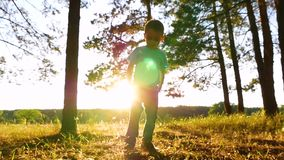 Niño pequeño feliz que juega con follaje en el parque o en el bosque en la puesta del sol El niño muestra emociones: risa, alegrí almacen de metraje de vídeo