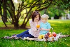 Niño pequeño hermoso con su madre joven que tiene una comida campestre en parque soleado del verano Imagen de archivo libre de regalías