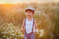 Niño pequeño hermoso en campo de la margarita en puesta del sol Imagen de archivo