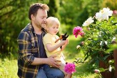 Niño pequeño lindo con su padre que trabaja así como secateur en jardín nacional Foto de archivo libre de regalías