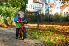 Niño pequeño lindo de dos años que montan la bici en parque de la ciudad del otoño Imagen de archivo