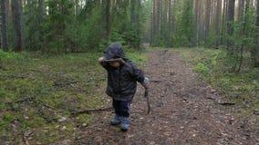 Niño pequeño lindo que camina en el parque en bosque del pino, niño cansado, apenado y decepcionado almacen de metraje de vídeo