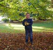 Niño pequeño lindo que lanza las hojas coloridas Foto de archivo