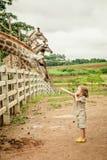 Niño pequeño que alimenta una jirafa en el parque zoológico Foto de archivo libre de regalías